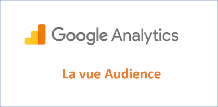 Google Analytics Audience – Etape 2 sur 5